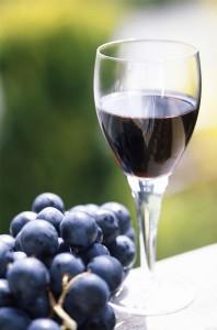 Casa de vinuri Mihail - Import si Distributie Cricova Moldova, Vinex Murfatlar, Tenuta Odobesti, Villany Ungaria, Tokaji Ungaria